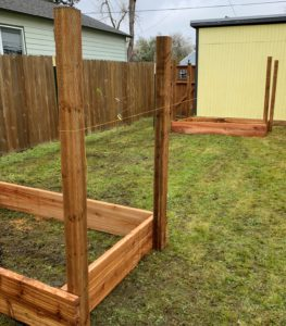 Raised Garden Bed Lined Up