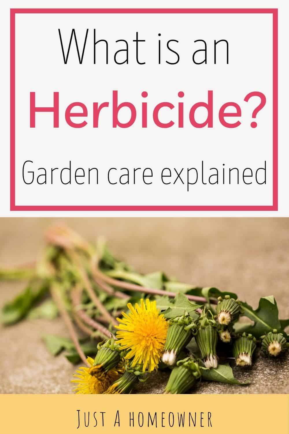 What Is An Herbicide And How Do You Choose The Best One?
