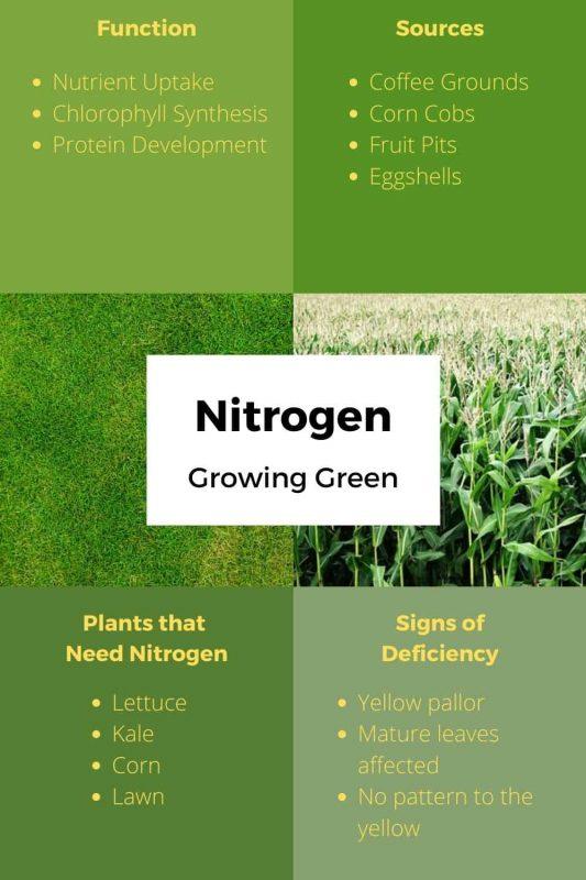 Nitrogen Fertilizer Uses and Sources