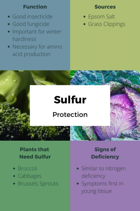 Sulfur Uses and Sources